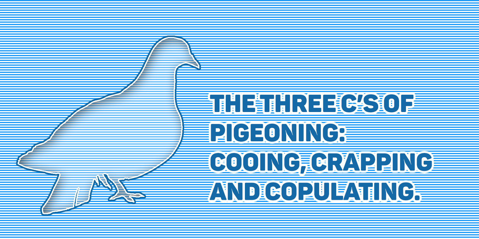 The three c's of pigeoning: cooing, crapping and copulating